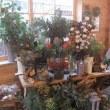 『花と小さな暮らしの市場』へ参加させて頂きました。ご来場頂いた皆様、本当に有難うございました。