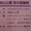 神道山のイベント