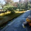[京の冬の旅」非公開文化財特別公開。「相国寺」の「慈照院」 朝鮮通信使の歴史を物語る品々