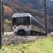 11月10日撮影 急行「中山道トレイン」より