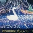 『Azumino光のページェント』☆彡