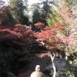 写真館を「No.811 秋の広島~津和野にも行ってきました!(その2)」に更新しました!