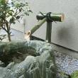 新たな青竹で新年を、
