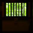 智積院のサツキ 床緑