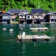 海から見る舟屋-京都府伊根町
