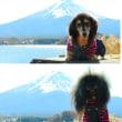富士山に会いに行く旅♪ 1 ~河口湖~