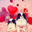 ☆ Valentine ☆