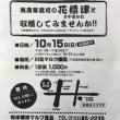 川北ジャガイモ祭り!
