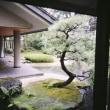 京都公演終了っ