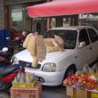 台南201811:崇徳市場