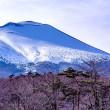 冠雪の浅間山を麓で眺める、国道146号(軽井沢)にて(2019年3月)