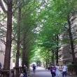 早稲田大学へ