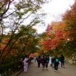 清閑寺・清水寺の紅葉 ・・・ 京都