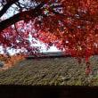 もみじ祭り~心静かに紅葉を観る会(富士吉田市)①