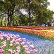 木曽三川公園へ(2)