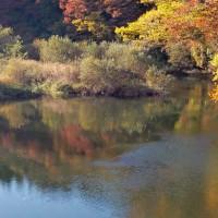 新井田川上流に公園を見つけました