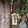 千葉市登渡神社神輿渡御2017年その3 219回