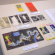 明治の森箕面国定公園指定50周年記念 企画展「ようこそ箕面へ!」が郷土資料館で開催中!