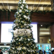 大阪の街は、クリスマスデコレーション