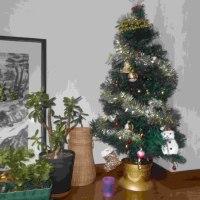 あーちゃんのクリスマスツリー