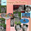 Happy Birthday~🎶