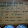 オハヨー乳業のロイテリヨーグルトが到着♪ (キャンペーン情報有り!)