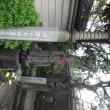 日限地蔵  (本駒込、徳源院内)