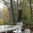 アフタヌーン・カフェ。聖高原山荘の庭。