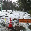 大雪に埋もれていた寺尾中央公園、現在の姿は。