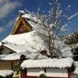 美山・かやぶきの里の雪景色♪