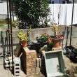 女一人で庭にフェンスを自作しますよ【組み立て編】