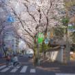 2018.03.29 武蔵野市 武蔵境駅南口 : 朝の桜並木