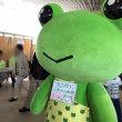 立川楽市(11月4日・11月5日)ゲコ太が うど稲荷ずし美味しいって!!
