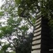 1249 「神田川沿いに、肥後細川庭園」