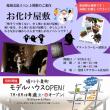 8月5日(土)お化け屋敷イベント開催!
