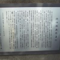 長津田駅から 恩田川 成瀬 こどもの国へ