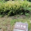 地図クびわ検【1647】号