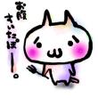 【飽き休みの】豆苗栽培記録【宿題】