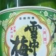 雪中梅(540円)