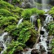 素簾の滝 - II