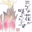 こんな花が咲くんです