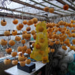 百目柿の干し柿