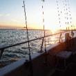 アメリカで体験する、イカすイカ釣り天国って