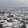 初雪だ ⁉