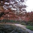 太田黒公園