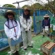 蜂場を見学頂きました