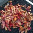 11月20日(火)わが家のシンボルツリー