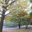 秋散歩4 ☆ 忙しいと言う言葉