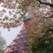 #104 -'19. 4月19日の日記(赤羽橋から増上寺&金地院)