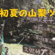 初夏の山梨ツーリング 其の④ 日本一高所車道峠 『大弛峠』&【夢の庭園】へプチ登山・・絶景かな ❣❣